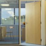 Ash Veneer Flush Doors