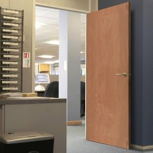 Plywood Veneer Doors