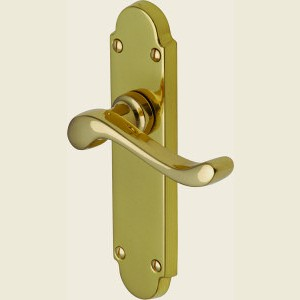 Savoy Polished Brass Door Handles