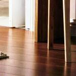 Timberjack Professional Laminate Flooring