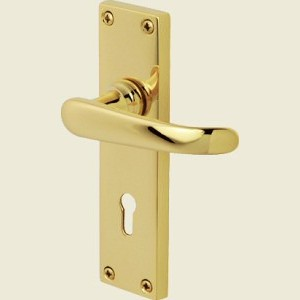 Windsor Polished Brass Door Handles