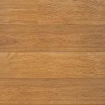 Perspective V2 Natural Varnished Oak Planks