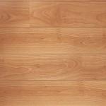 Perspective V2 Varnished Beech Flooring Sample