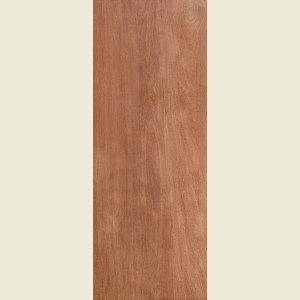 Plywood Veneer Doors