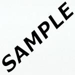 Bianco Matt Laminate Sample