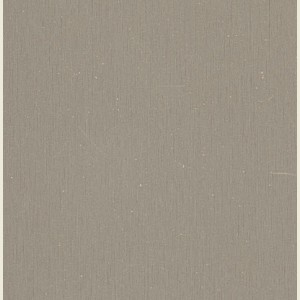Brushed Argent Laminate Sheet 3050mm X 1220mm