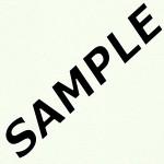 Axiom White Laminate Sample